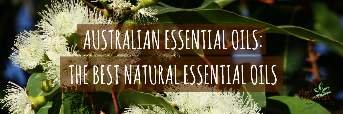 Australian Essential Oil: The best natural essential oils