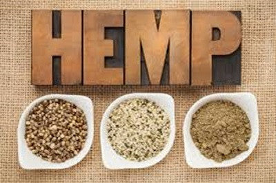 Health Benefits And Uses Of Hemp Oil