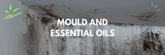 Mould and Essential Oils