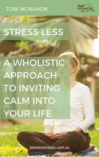 Stress Less - A Wholistic Approach To Inviting Calm Into Your Life eBook