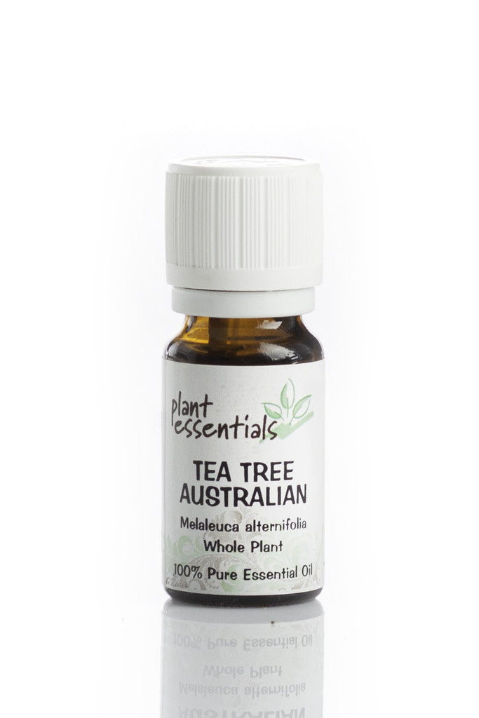 Health Benefits And Uses Of Tea Tree Essential Oil