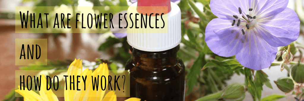 What Are Flower Essences And How Do They Work?