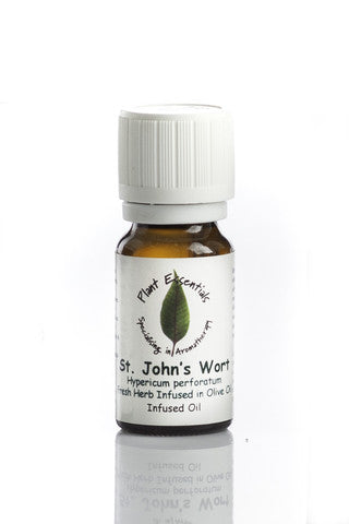 st john's wort by Plant Essentials