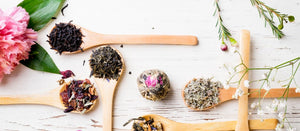 HERBS & TEAS FOR BEGINNERS