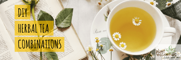 diy herbal tea combinations plant essentials