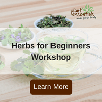 herbs for beginners workshop