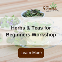 herbs and teas for beginners workshop