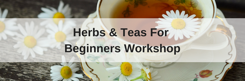 herbs and teas for beginners workshop plant essentials townsville