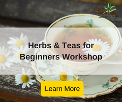 making herbs and teas for beginners workshop