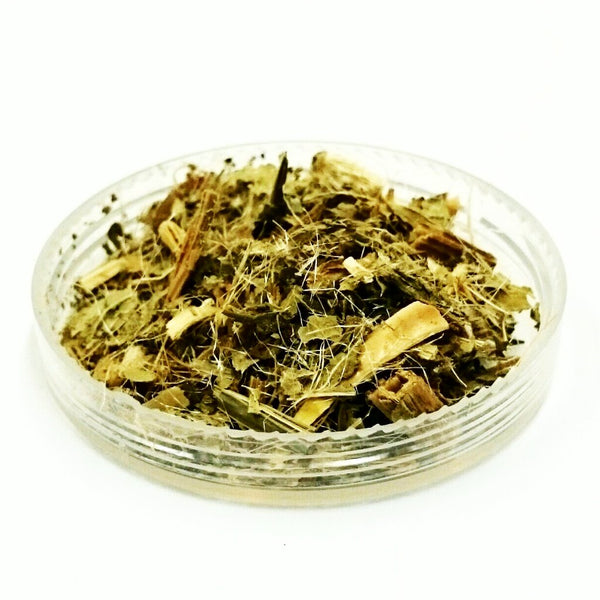 Blessed thistle herb, Cnicus benedictus, Organically grown