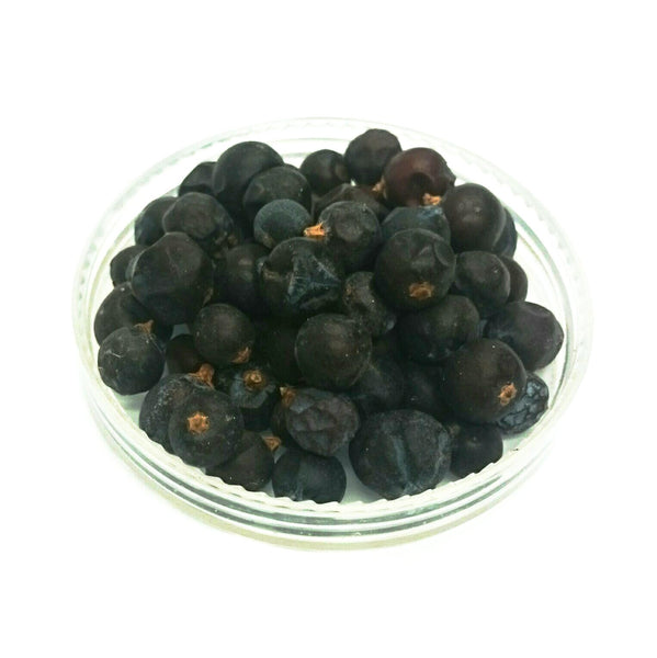 Juniper Berry, Juniperus communis, Organically grown