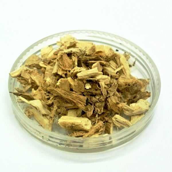 Marshmallow Root, Althea officinalis, Wildcrafted