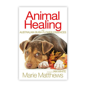 Animal Healing ~ Ian White