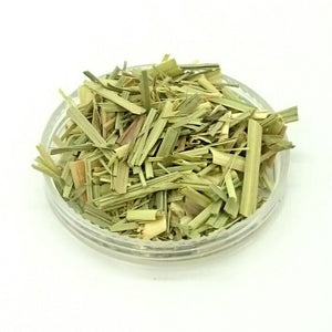 Lemongrass herb, Cymbopogon citratus ~ Organically grown