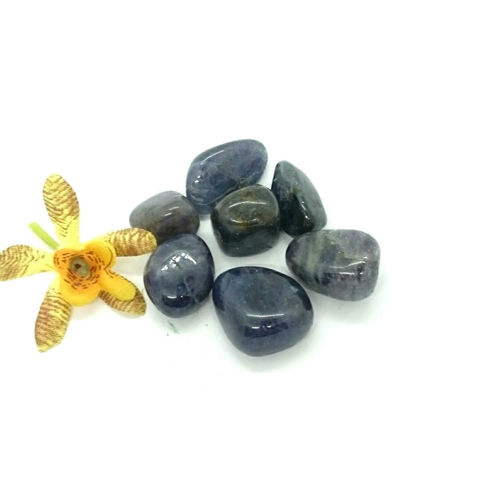 Iolite ~ tumbled stone (each)