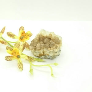 Brown Calcite on White Calcite