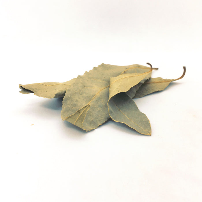Bay Leaves, Laurus nobilis