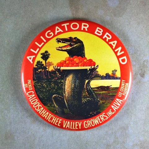 Vintage Orange Label Fridge Magnet Alligator Brand Florida