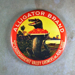 "Fridge Magnet 2 1/4"" Orange Label Alligator Brand Vintage Florida"