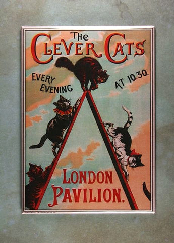Vintage Theater Poster  Fridge Magnet The Clever Cats