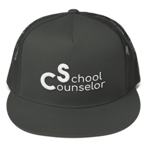 School Counselor 3D Partial Puff Light Mesh Back Snapback - The School Counselor Shop  Great gifts and items for school and guidance counselors. School Counseling, Counseling, School Shirts, Counseling Apparel
