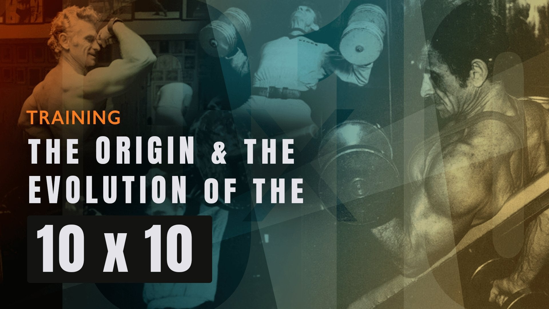 THE ORIGIN AND EVOLUTION OF THE 10 X 10 | NSP Nutrition