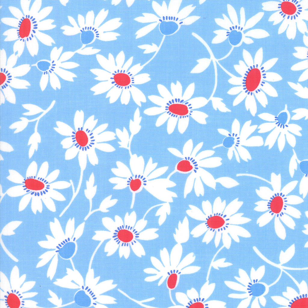 Back Porch Screen Door Blooming Sky Blue SKU# 22392 22