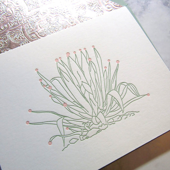 Agave Holiday Cards {custom}