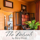 C2 Paint - The Naturals by Barry Dixon