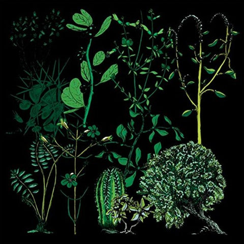 Campdogzz - In Rounds Album Artwork is an illustration made up of green plants with a black background