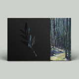 The Album Leaf | An Orchestrated Rise To Fall - LP