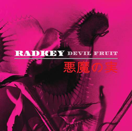 Radkey | Devil Fruit