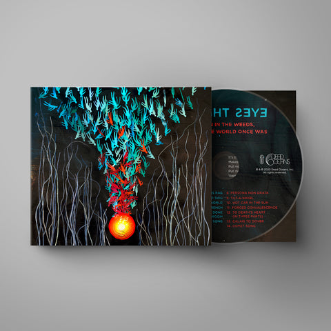 Bright Eyes | Down In The Weeds, Where The World Once Was CD *PREORDER*