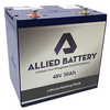 "Allied ""Drop-In-Ready"" Lithium 48V Batteries for EZGO TXT 2014+"