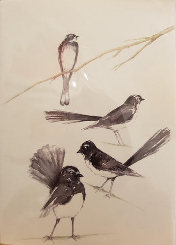 Greeting Card - Willie Wagtails - Atelier Crafers