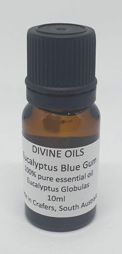 Eucalyptus Blue Gum 100% Essential Oil 10ml - Divine Oils-Bath & Body-Atelier Crafers