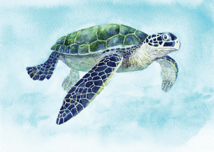 Greeting Card - Turtles-Homewares-Atelier Crafers