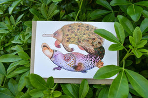 Greeting Card - Monotreme Dreams - Zinia King-Homewares-Atelier Crafers