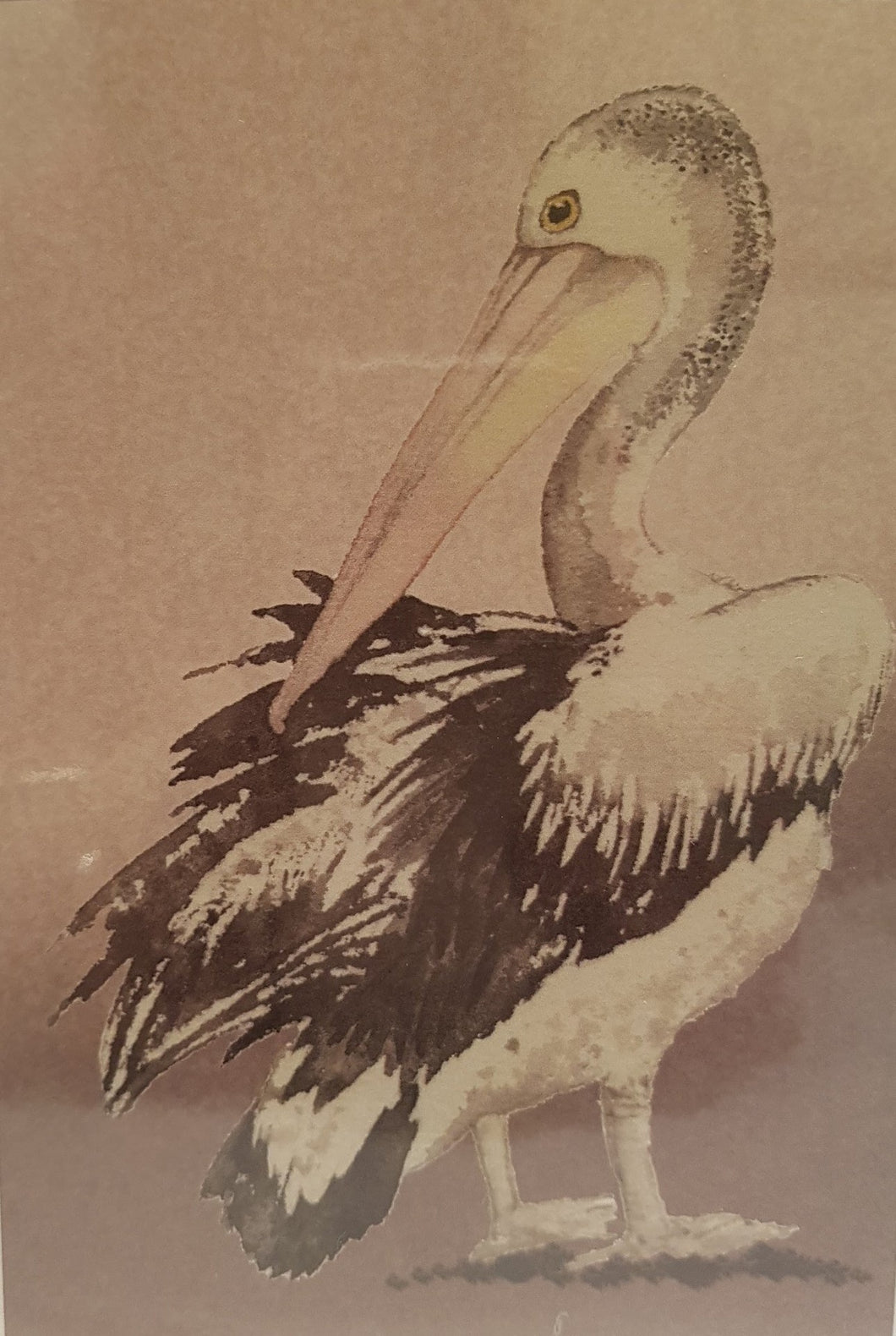Greeting Card - Pelican - Paula Schetters-Stationery-Atelier Crafers