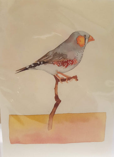 Greeting Card - Zebra Finch - Atelier Crafers