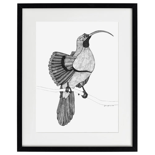 Bird of Paradise  - Limited edition archival quality giclée print - Atelier Crafers
