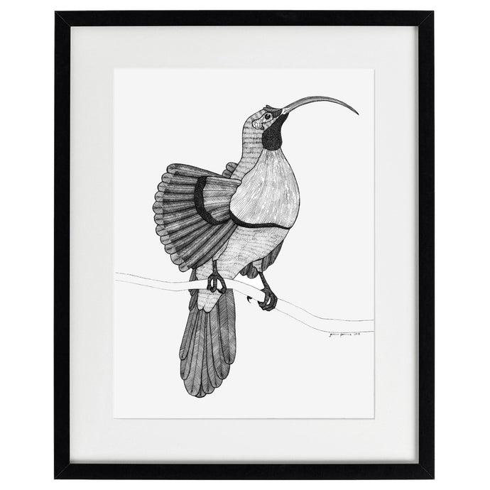 Bird of Paradise - Limited edition archival quality giclée print-Homewares-Atelier Crafers