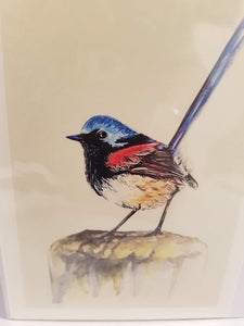 Greeting Card - Red Winged Fairy Wren-Homewares-Atelier Crafers