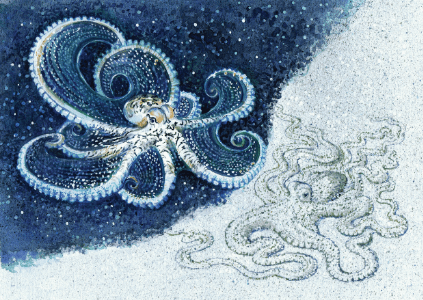 Greeting Card - Octopus-Homewares-Atelier Crafers
