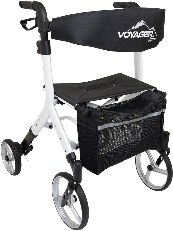 Ice palace voyager euro rollator