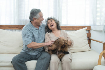 Support animals for seniors offers a chance to meet new people.