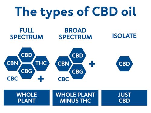 The Types of CBD Oil: Full Spectrum, Broad Spectrum, and Isolate