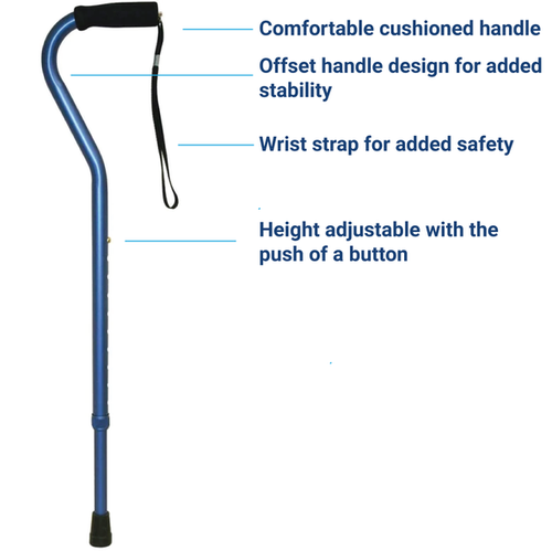 Offset cane handle