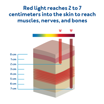 Red light reached two to seven centimeters into the skin to reach muscles, nerves, and bones