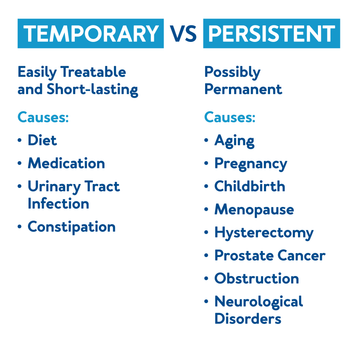 Temporary vs. Persistent Urinary Incontinence